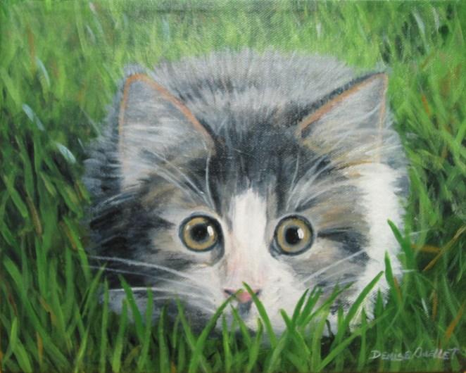 Le chat d'Alicia